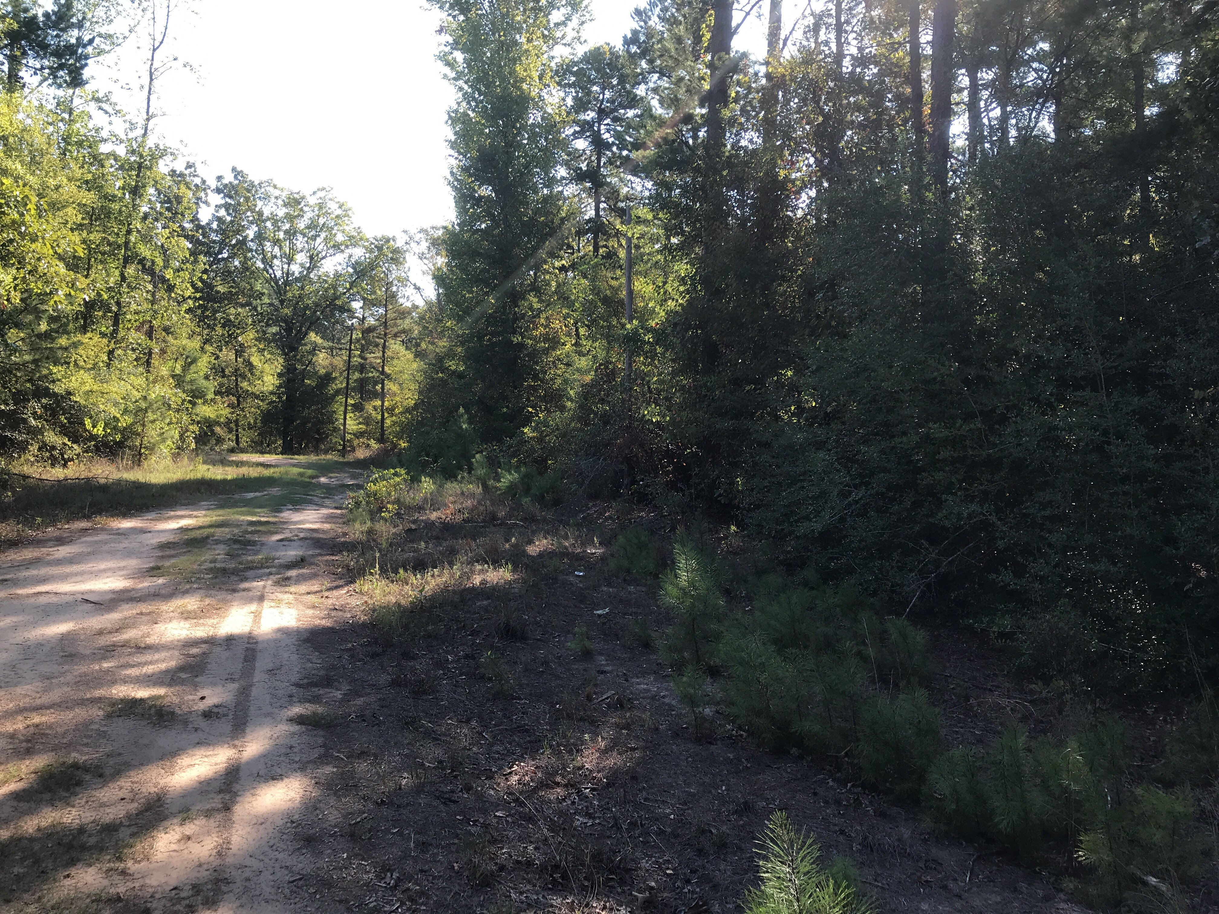 SOLD!! 3 72 Acres of Beautifully Wooded Land Just Outside of Ore