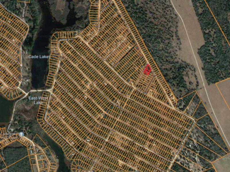 Satellite Neighborhood